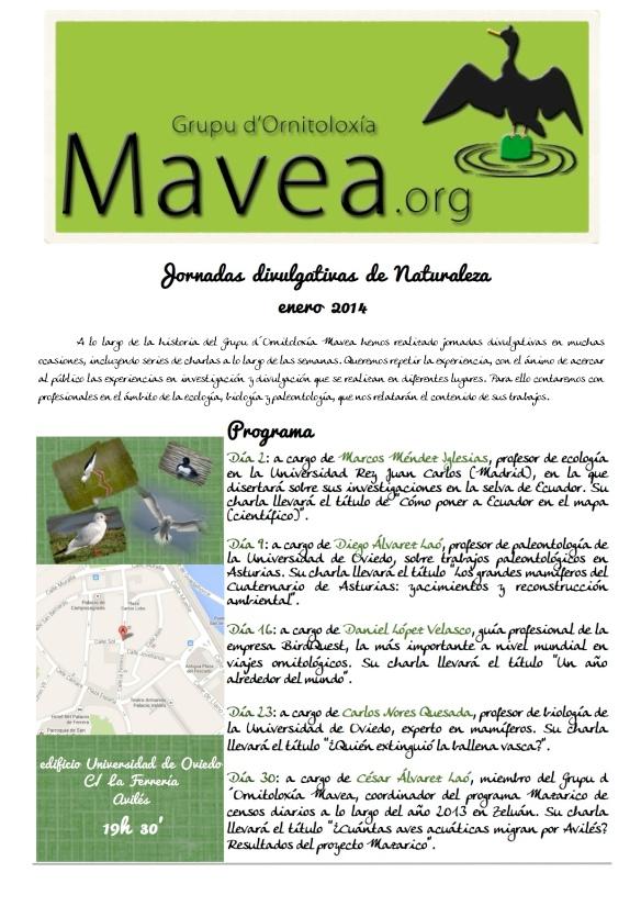 actividades enero grupo MAVEA