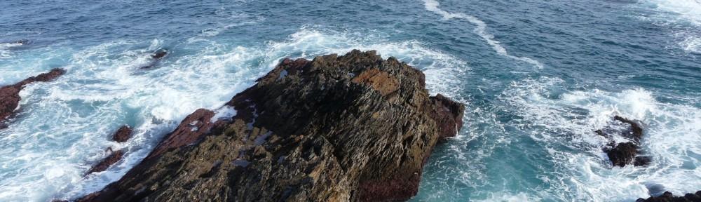 A.N.A. Asociación Asturiana d'Amigos de la Naturaleza