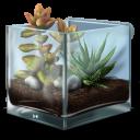 Succulent-Terrarium-icon